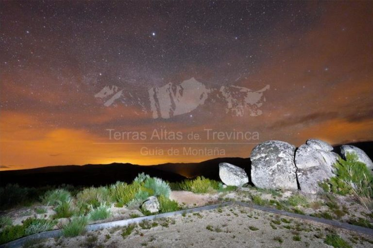 starlight trevinca